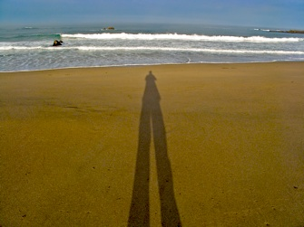 self-projection shadow